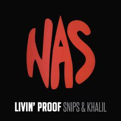 Nas Illmatic 20 Mix - Khalil & Snips