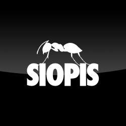 SIOPIS – ANTS Live Streaming @ Ushuaïa Ibiza 03/08/2013