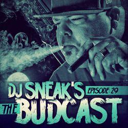 DJ Sneak | The Budcast | Episode 29