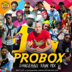 DJ ROY PROBOX DANCEHALL MIX 2019 #dancehall #hardcore