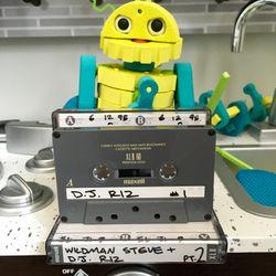 The Hip Hop Spot w/WildMan Steve & DJ Riz 90.3 WBAU June 12, 1995