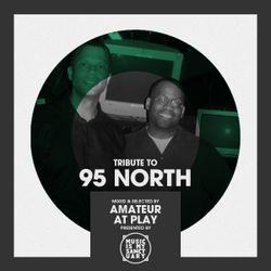 Tribute to 95 NORTH - Selected & Mixed by Amateur At Play