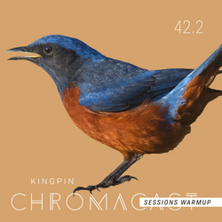 Chromacast 42.2 - Kingpin - Chromacast Sessions July 2018 Warmup