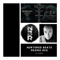 Nurtured Beats Promo Mix - July 2019
