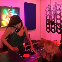 Pickpocketparty guest hosting – Analogue Players Club (08.03.18)