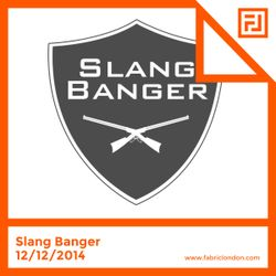 Slang Banger - FABRICLIVE x RAM Mix