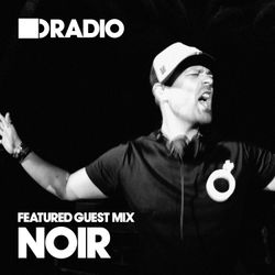 Defected In The House Radio 8.7.13 - Guest Mix Noir