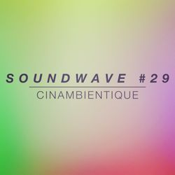 SOUNDWAVE #29