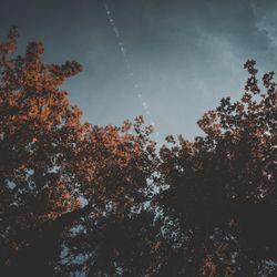 Autumn Reverie - ST 2016.11.20