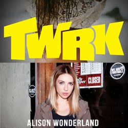 Diplo & Friends on BBC Radio 1 ft TWRK and Alison Wonderland 4/27/14