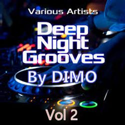 Deep Night Grooves Vol 2