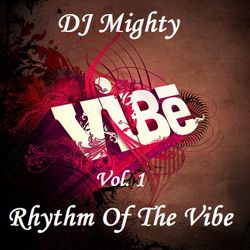 DJ Mighty - Vibe Collection Vol. 1 - Rhythm Of The Vibe