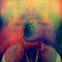 A Kind of Conscious Rhythm | SCV Podcasts 181