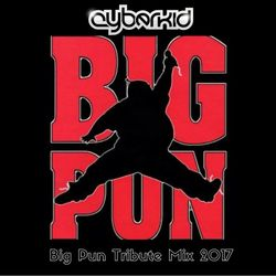 BIG PUN TRIBUTE MIX by DJ CYBERKID