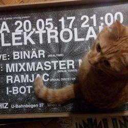 Mixmaster Morris @ Vienna Rhiz 1