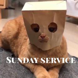 """Sunday Service """" Sly Gato """""""