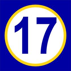Skitzophonic #17 (XL)
