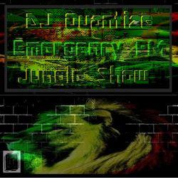 #80 Emergency FM - Jungle Show - Sep 2nd 2014.