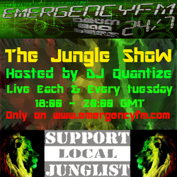 # 67 Emergency FM - Jungle Show - May 27th 2014