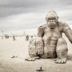 Burning Man 2016 - 04 - Guy Gerber (Supplement Facts) @ Black Rock Desert - Nevada (02.09.2016)