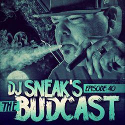 DJ Sneak | The Budcast | Episode 40