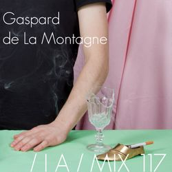 IA MIX 117 Gaspard de La Montagne