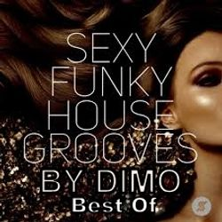 Sexy Funky House Grooves Best Of