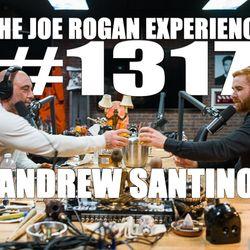 #1317 - Andrew Santino