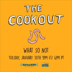 The Cookout 084: What So Not