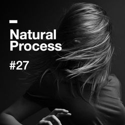 Natural Process #27