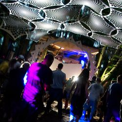 Tree House Stage Mid Tempo Set @ Noisily Festival 2015 - Bassport FM Takeover