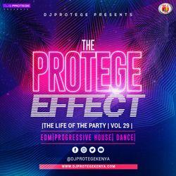 Dj Protege - The Protege Effect Vol 29