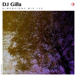 DIM120 - DJ Gilla