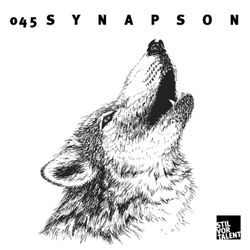SVT–Podcast045 – Synapson