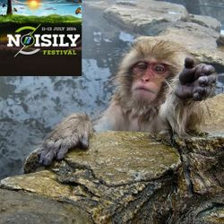 Mudstompin Munkee Live on BassportFM - The Mudstompin Noisily Menagerie #4 - June 17th 2015