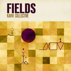 #379: Various Artists / Fields