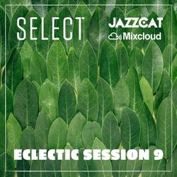 Eclectic session 9