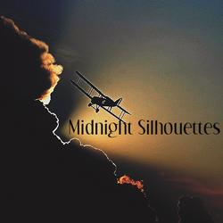 Midnioght Silhouettes 7-25-21