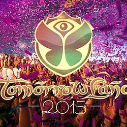 Best of Tomorrowland - 06 - Paul Kalkbrenner -Live- @ Recreational Area De Schorre Boom (25.07.2015)
