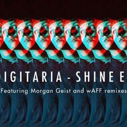 Digitaria - Shine Mix