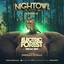 Night Owl Radio 097 ft. Electric Forest 2017 Mega-Mix