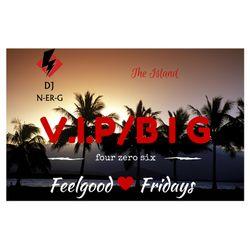 DJ N-er-G: V.I.P./B I G