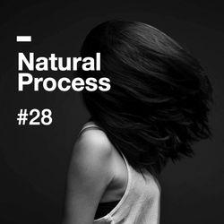 Natural Process #28