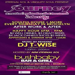 Ubiquity Soul present (Journey Vol-2) at Bushbaby with DJ T-Wise