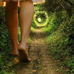 Eccentric Ear #28/2016 Down the Rabbit Hole with Gabrielle St. Evensen