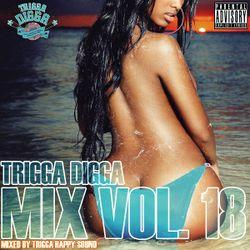 TRIGGA DIGGA MIX VOL. 18