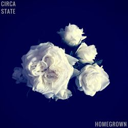 #386: Circa State / Homegrown