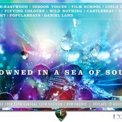 Drowned in a Sea of Sound, Volume 29