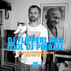 Deepinrecords Guestmix by DJ Flipperi aka Cool DJ Pinball (2016)