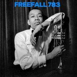 FreeFall 783